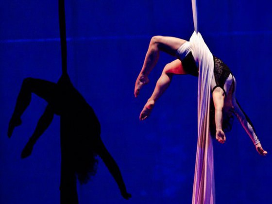 Aerial dancer - aerial fabric, show, art