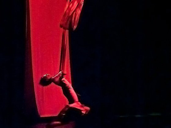 - art du cirque, tissu, show