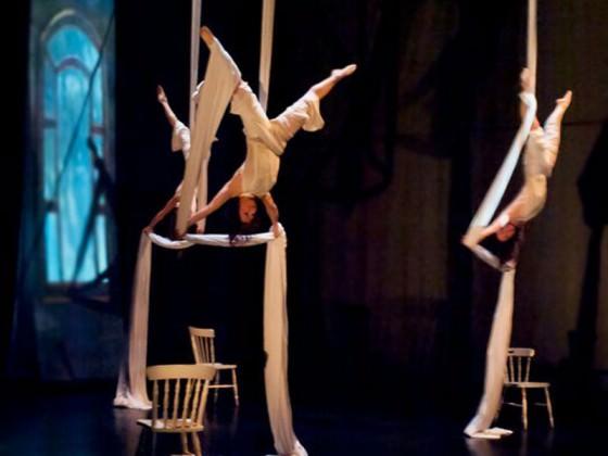 Aerial dancers - acrobate, danse, cirque