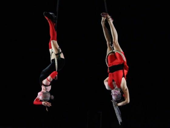 Danseurs sur agrès - show, aerial workshop