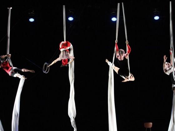 Danseurs aériens sur tissu - numéros, art du cirque