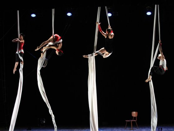Aerial workshop, cirque contemporain