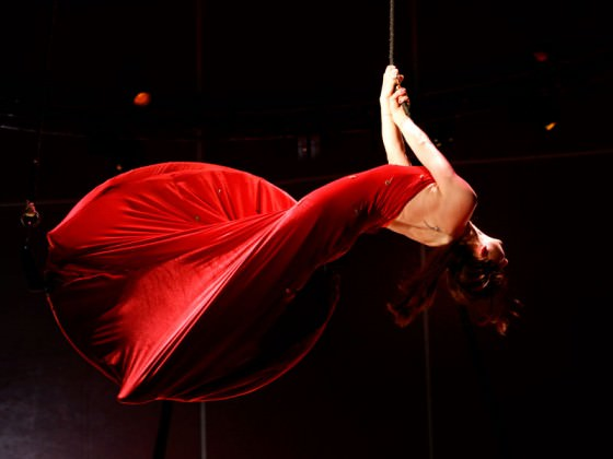 Aerial dancer in a hoop dress - cerceau, robe, spectacle