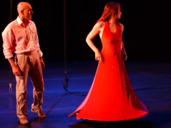 Danseurs aériens (cerceau, robe, spectacle)