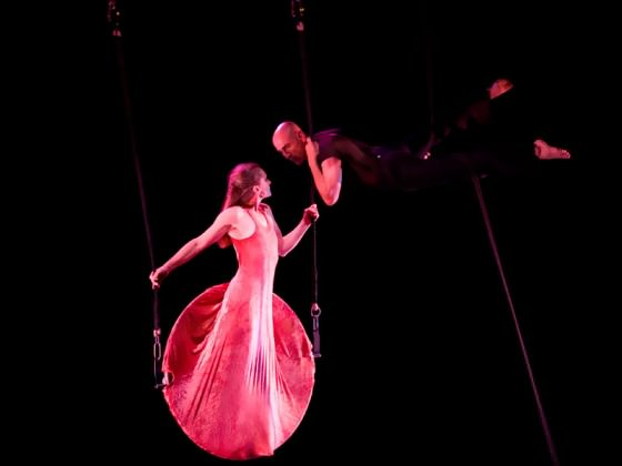 Aerial dance creation - cirque contemporain