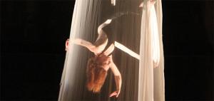 Démarche artistique_danse aérienne